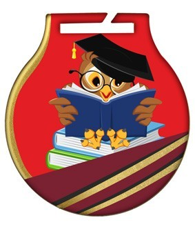 Medal stalowy z usługą Q – SZKOLNICTWO